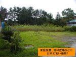 下川字窪畑・100万土地 [T0861]